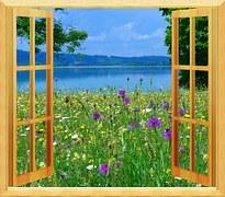 fönster vacker utsikt
